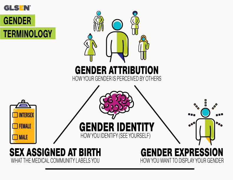 Graphic with various gender terms and representational icons